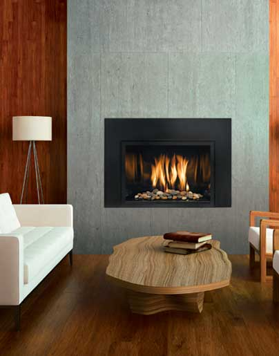 Gas fireplace inserts Contemporary wood fireplace insert