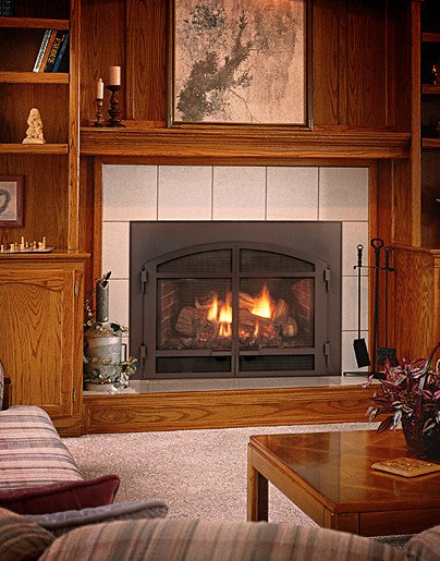 Mendota D-40 Gas Fireplace Insert